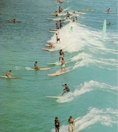 everybody was surfing.