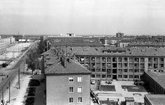 Dózsa György út a főiskolai kollégium tetejéről. Háttérben a tanácsház (ma polgármesteri hivatal) épül.