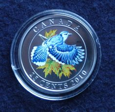 This larger-than-usual 25-cent coin in the Birds of Canada series showcases the Blue Jay and its signature, vivid blue that's created by the unique structure of its feathers and how they reflect light.  This active, bold and vocal bird is a joy to watch. It's a regular visitor to backyard feeders throughout southern Canada—a fact that makes this coin a perfect collectible for bird lovers! Canadian Things, Blue Jay, Feathers, Larger, Coins, Southern, Canada, Backyard, Lovers