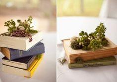 DIY – Libro-Planta |
