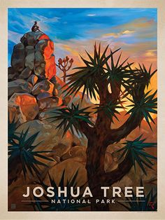 Joshua Tree National Park: Desert Sunrise - Anderson Design Group has created an award-winning series of classic travel posters that celebrates the history and charm of America's greatest cities and national parks. Founder Joel Anderson directs a team of talented artists to keep the collection growing. This oil painting by Kai Carpenter celebrates the rugged beauty of Joshua Tree National Park.