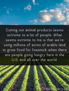 To feed the world, we don't need to grow more food. We need to change how we are eating.