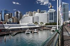 World Hotel Finder - Four Points by Sheraton Sydney Darling Harbour