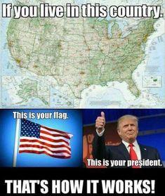 Pro Trump Supporters