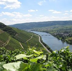 River trip Up the Moselle, Mosel, from Koblenz to Trier Its wines, its towns, and people. Mosel Germany, Places To Travel, Places To See, Travel Destinations, Wonderful Places, Beautiful Places, Semester At Sea, European River Cruises, Cruise Europe