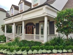 Portfolio — Designs By Elizabeth Boxwood, agapanthus?, and Allysum? Beautiful Patios, Porch Landscaping, House Exterior, Beautiful Homes, Front Porch Landscape, Southern Living Plants, Curb Appeal, Front House Landscaping, Farmhouse Landscaping