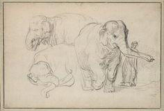 Rembrandt Harmensz. van Rijn, Drei Studien eines Elefanten, daneben ein Wärter, um 1637 © Albertina, Wien
