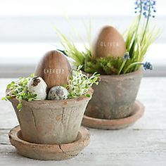 The first signs of spring are often fleeting, only adding to the anticipation we feel as the first big celebration of the season, Easter, approaches.