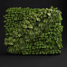 Green wall Model available on Turbo Squid, the world's leading provider of digital models for visualization, films, television, and games. Texture Mapping, 3d Warehouse, Green Grass, How To Dry Basil, Greenery, 3d Printing, Plants, Sketchup Models, Tree Wall