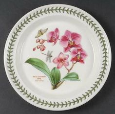 Portmeirion Exotic Botanic Garden Dinner Plate, Fine China Dinnerware by Portmeirion. $25.99. Portmeirion - Portmeirion Exotic Botanic Garden Dinner Plate - Flower & Butterfly,Multimotif,Laurel Rim