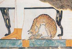 Chat mangeant un poisson sous le siège de l'épouse du défunt dans une scène de banquet. Tombe de Nakht TT52