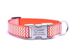 Flying Dog Collars - owner information engraved on the buckle