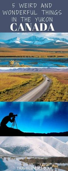 5 Cool And Quirky Things To Do in Yukon Canada. There are strange things done beneath the Yukon's midnight sun – and sometimes in the depths of winter's darkness. But there are wonderfully sublime moments, too. Places To Travel, Travel Destinations, Places To Visit, Travel Stuff, Quebec, Montreal, Columbia, Travel Around The World, Around The Worlds
