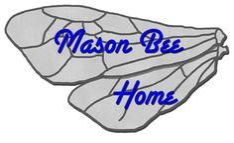 Mason Bees Header