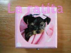 Caja Cachorro