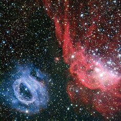 twee totaal verschillende gaswolken in de Grote Magelhaense Wolk. De ene is blauw, de andere rozig. De roze wolk – NGC 2014 – bestaat voor een groot deel uit geïoniseerd waterstofgas en dus uit veel jonge, hete sterren. De andere wolk krijgt zijn blauwe kleur doordat de hete ster in het hart van de wolk straling afgeeft.Bron: http://www.scientias.nl