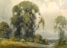 View Eucalyptus with the bay in the distance By Percy Gray; Watercolor on paper affixed to board; Access more artwork lots and estimated & realized auction prices on MutualArt. Beautiful Landscape Paintings, Small Paintings, Cool Landscapes, Tree Paintings, Watercolor Trees, Watercolor Landscape, Landscape Art, Watercolor Paintings, Landscape Pencil Drawings