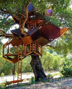 Not your usual treehouse!