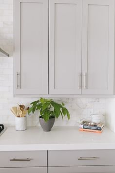 Grey Kitchen Cabinets with Caesarstone Organic White Counters - Transitional - K. Grey Kitchen Cabinets with Caesarstone Organic White Counters - Transitional - Kitchen - Benjamin Moore Mindful Gray, Light Gray Cabinets, Grey Kitchen Cabinets, Kitchen Cabinet Colors, Kitchen Redo, New Kitchen, Kitchen Dining, White Cabinets, Wooden Kitchen, Kitchen Paint