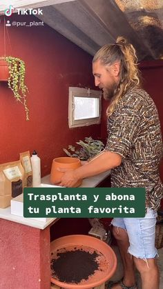 House Plants Decor, Plant Decor, Hydroponic Gardening, Organic Gardening, Forever Green, Plants Are Friends, Flower Packaging, Home Vegetable Garden, Green Life