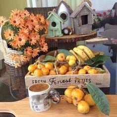 En güzel mutfak paylaşımları için kanalımıza abone olunuz. http://www.kadinika.com Huzurlu bir hafta geçirmeniz dileğimleGünaydınsayfama yeni katılan arkadaşlarHoşgeldinizBahçelerimizin yenidünyaları tatlanmaya başladı#gunaydin #yenidünya #fruit #kahvekeyfi #türkkahvesi #kahve#coffee #coffeetime #çiçek#flowers #instaflower #photooftheday #objektifimden #like4like #likeforlike #mersin#turkey #mutfakgram #sahanelezzetler #sunumduragi