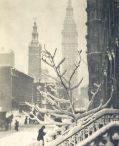 paul strand  i liike how he took a picture of the snow on the trees and on the railings but in the background you can see the buildings