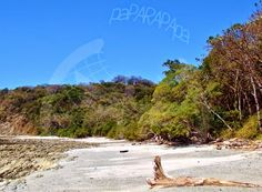 Playa Rosada. Playa Garza. Costa Rica.