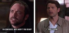 SPN in a nutshell.