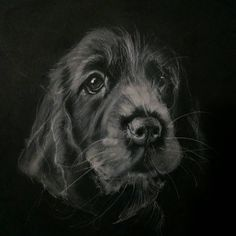 """295 - You may see this one again with a different media, love the expression and trying to capture that puppy loose face they have before growing too big. To paraphrase """"the big chill"""", I'm not into that whole completion thing. Thank you all for following along with my erratic stops and starts…"""