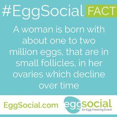 http://eggsocial.com/