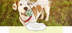 Dec. 2, 2016 | National Mutt Day