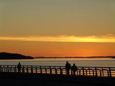 Concours coucher de soleil - Tourisme Bas-Saint-Laurent Bas Saint Laurent, Rive Nord, Ontario, Photos, Canada, Celestial, Sunset, Outdoor, Dolphins