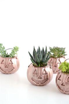 Mini Rose Gold Pumpkin Planters
