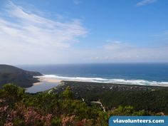 Ethical Volunteering with the best range of affordable Community, Child Care, Wildlife and Conservation volunteer projects in South Africa. Volunteer Work, Volunteer Abroad, Marine Conservation, Wildlife Conservation, Marine Bases, Outdoor Education, Gap Year, Volunteers, South Africa