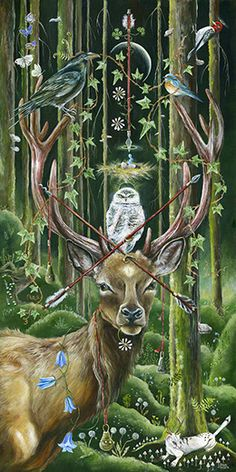 Arrow in the Sky Here and There by Janie Olsen, Acrylic Art And Illustration, Illustrations, Deer Art, Forest Art, Painting Gallery, Owl Art, Art For Art Sake, Whimsical Art, Woodland Animals