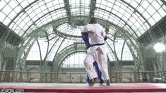 "Judo gif ""Teddy Riner doing Harai-goshi in great style!"" Martial Arts Probs"