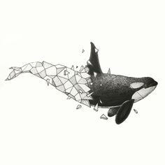 Orca by Kerby Rosanes