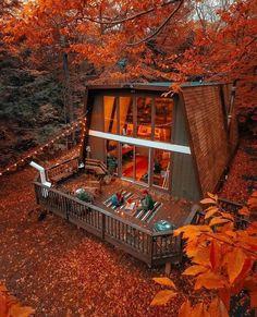 #autumn #ősz #beautiful #chill #chillvibes #forest