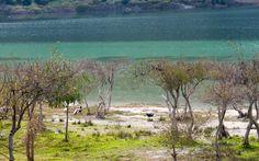 ΛΙΜΝΗ ΚΟΥΡΝΑ Water Nymphs, Good Energy, This Is Us, Greece, Mountains, Lakes, Fields, Legends, Travel