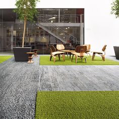 office employees desire natural light in their workplace - Supermarket Riot Outdoor Areas, Indoor Outdoor, Outdoor Decor, Kiwi, Work Office Design, Patio Plants, Waiting Area, Garden Office, Carpet Tiles