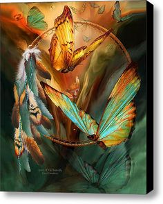Dream Catcher - Spirit Of The Butterfly Stretched Canvas Print / Canvas Art By Carol Cavalaris