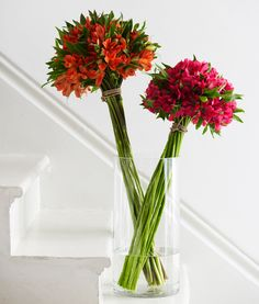 34 Amazing Unique Flower Arrangements Ideas For Your Home Decor, You can collect images you discovered organize them, add your own ideas to your collections and share with other people. Blooming Flowers, Simple Flowers, Beautiful Flowers, Tropical Flowers, Spring Flowers, Flowers Garden, Cut Flowers, Colorful Flowers, Ikebana