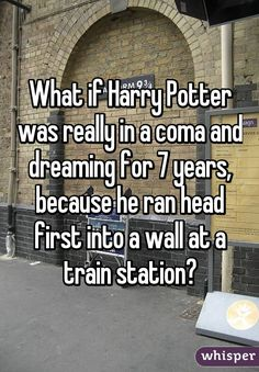 What if Harry Potter was really in a coma and dreaming for 7 years, because he ran head first into a wall at a train station? Harry Potter Puns, Harry Potter Universal, Harry Potter World, Harry Potter Theories, Scorpius And Rose, No Muggles, Whisper Confessions, Yer A Wizard Harry, Harry Potter Pictures