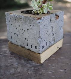 Concrete Cube Planter. Great idea with the design name printed in.