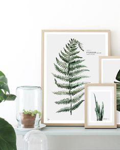 Klik hier en bekijk de mooie botanische poster collectie van My deer art shop!