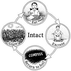 Intact nutrient cycle