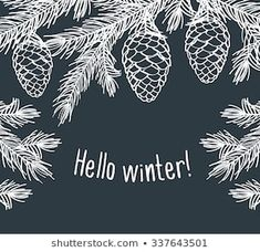 Hello winter. Background with pine branches with cones. Hand drawing with chalk on the blackboard. Sketch, design elements. Christmas, New Year. Vector illustration.