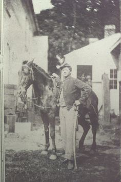 Unidentified Union Trooper. Note the roached mane on the Cavalryman's mount.