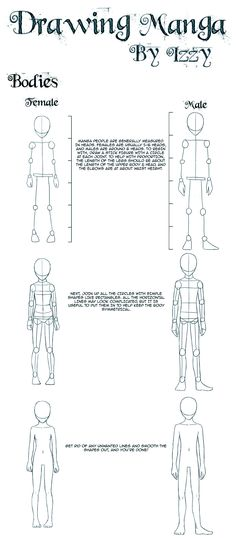 Tutorial on drawing manga-style bodies  •ANIME/MANGA TIP•