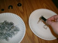 magnet science experiment